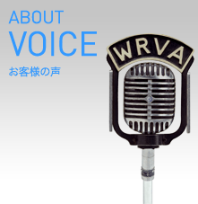 ABOUT/VOICE